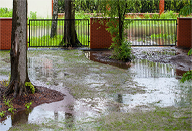 7 Backyard Landscaping Tips to Prevent Basement Flooding